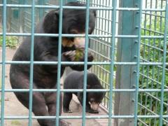 K640_Tierpark 18.7.08 088