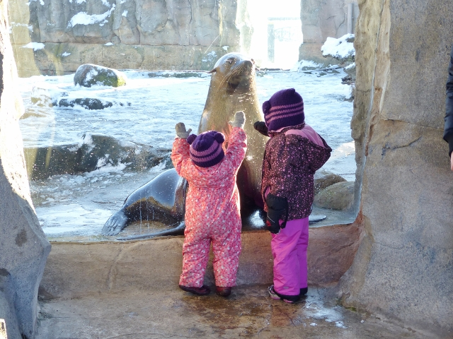 Zoo am Meer mit Buddy &Herrchen 126 (640x480)