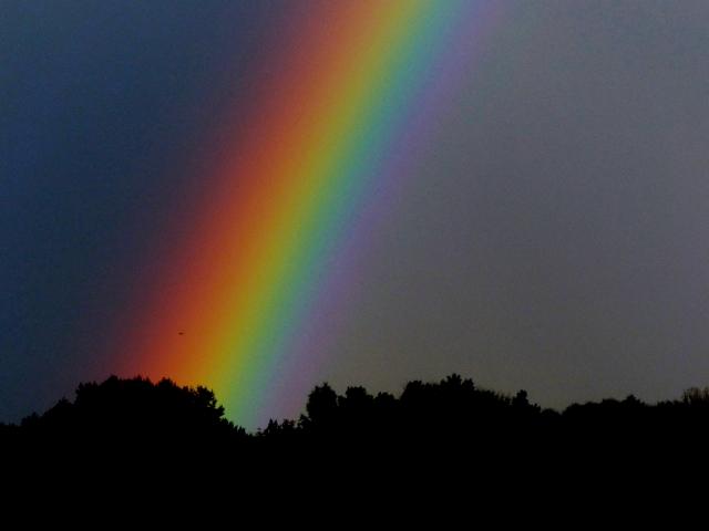 Tag des Regenbogens 3.4.2016 (640x480)